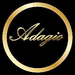 логотип ООО АДАЖИО 1137746989786