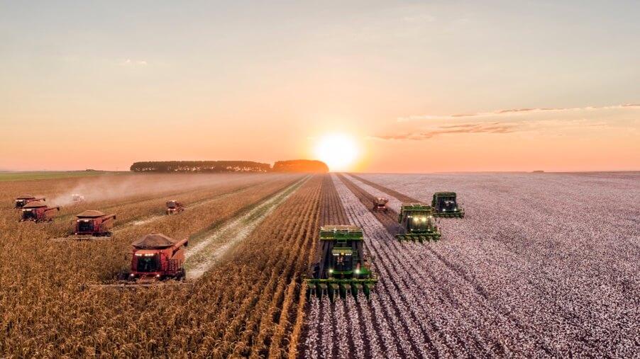 Агропромышленный комплекс России: итоги 2020 :: РБК Магазин исследований