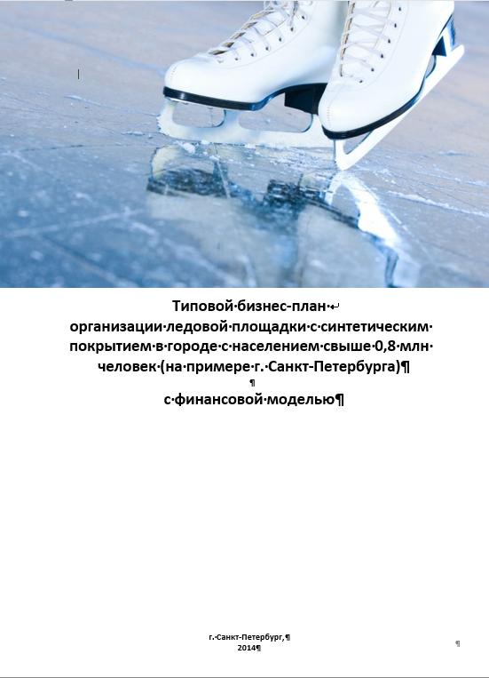 Бизнес план ледовой площадки выбор бизнеса идеи