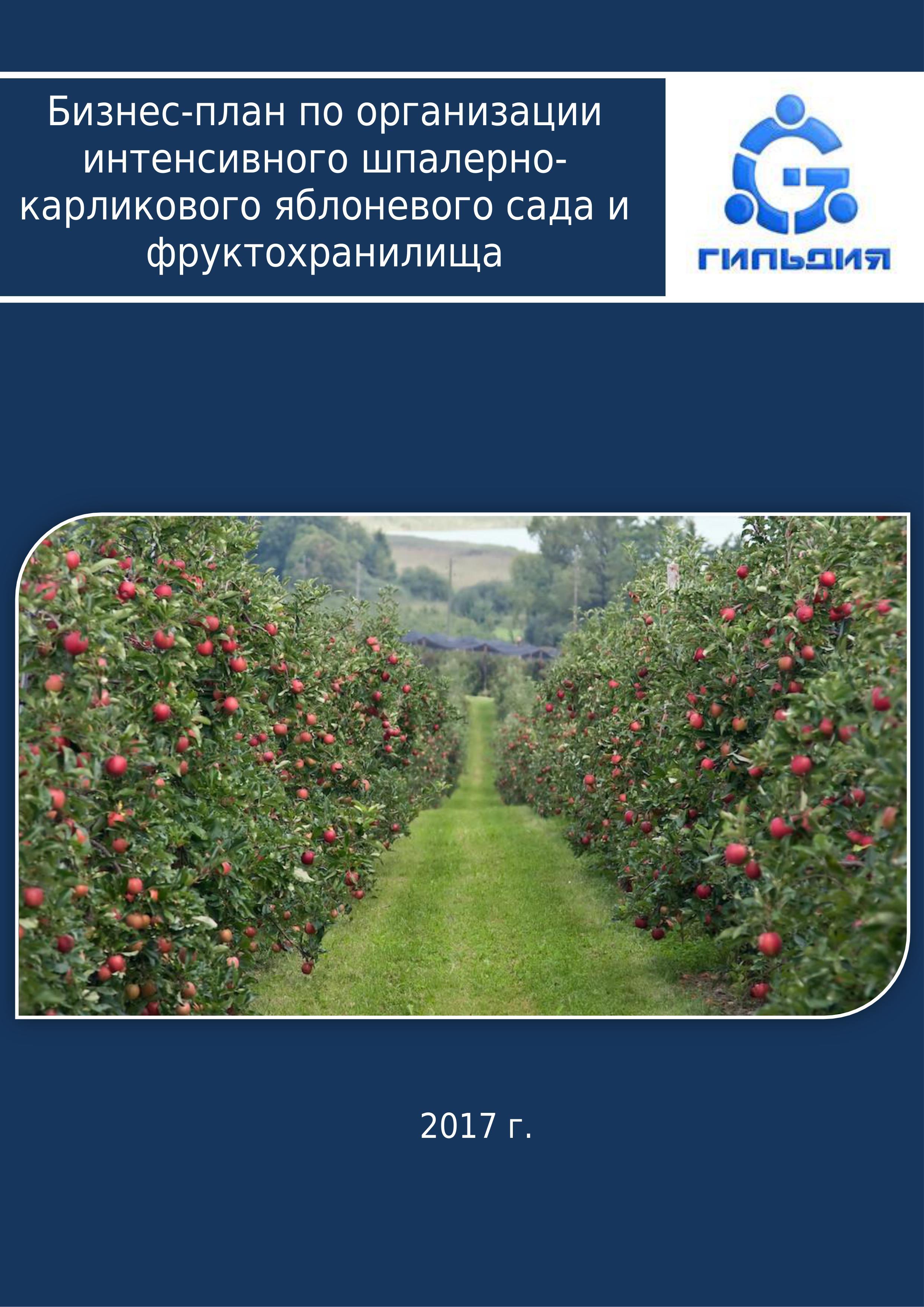 Бизнес план фруктохранилища проект бизнес план отдела