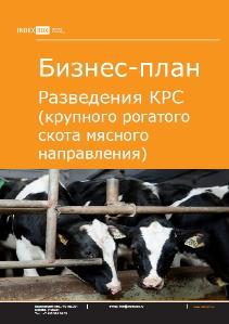 Бизнес план выращивание крупнорогатого скота 60