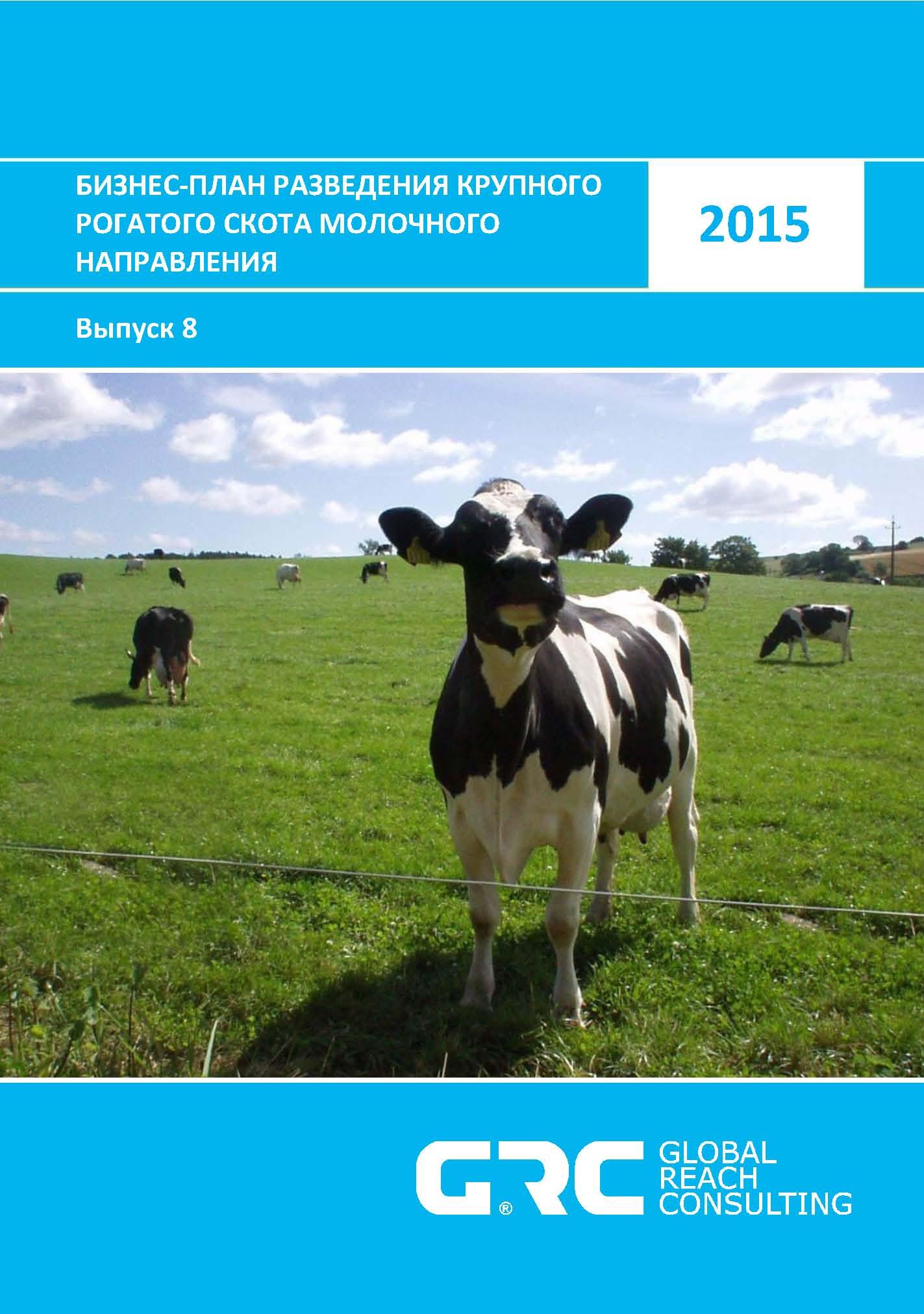 Бизнес план выращивание крупнорогатого скота 11