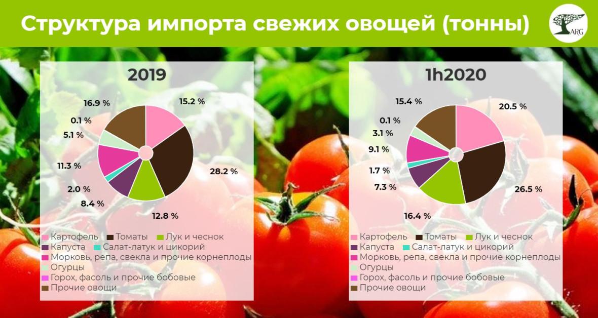 Пандемия почти не повлияла на импорт свежих овощей в Россию (-2,5% YoY в первом полугодии 2020 года)